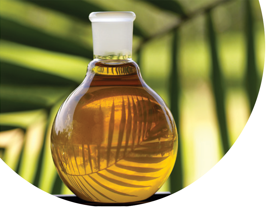Palm Oil Metl